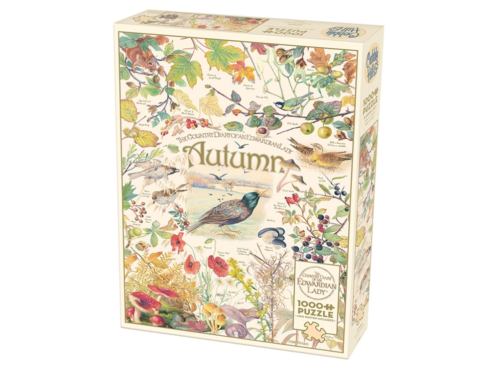 COUNTRY DIARY: AUTUMN 1000pc