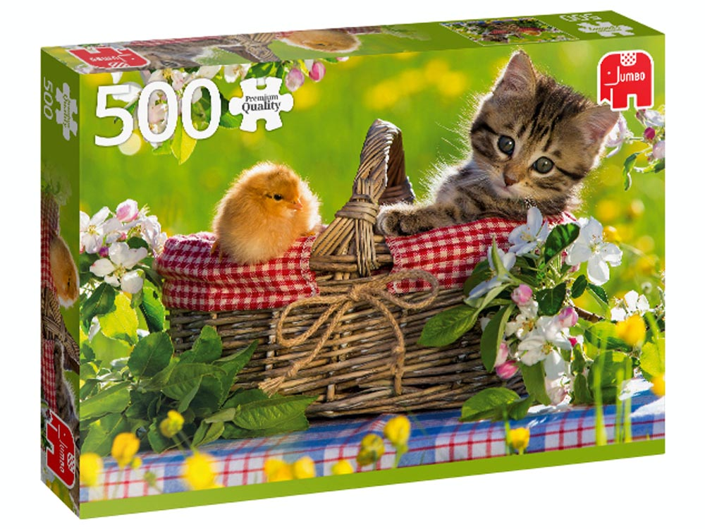 READY FOR A PICNIC 500pcs
