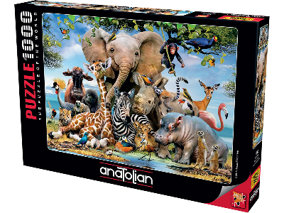 AFRICA SMILE 1000pc