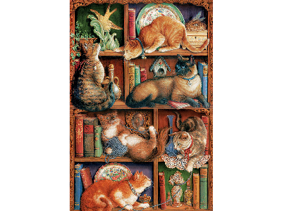 FELINE BOOKCASE 2000pc