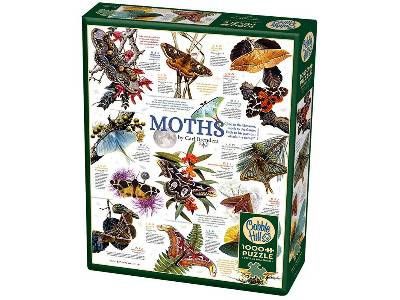 MOTH COLLECTION 1000pc