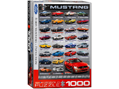 FORD MUSTANG EVOLULTION VERTIC