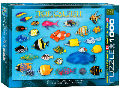 TROPICAL FISH 1000pc