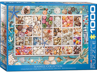 SEASHELL COLLECTION 1000pc