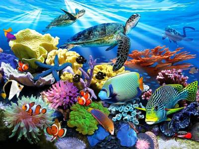 UNDERWATER WORLD 500pc