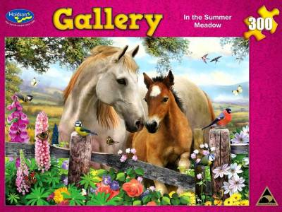 GALLERY MEADOW 300pc Large Pc.