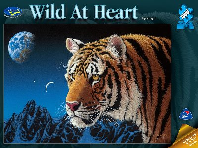 WILD AT HEART,TIGER NIGHT 1000