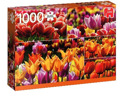 HOLLAND TULIPS 1000pc