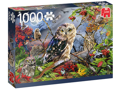 OWLS IN THE MOONLIGHT 1000pc