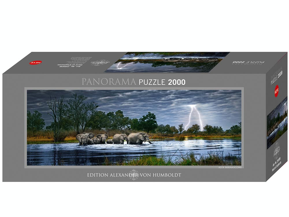 PANORAMA, HERD ELEPHANTS 2000p