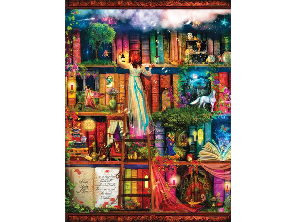 TREASURE HUNT BOOKSHELF 1000pc [SUN51067] : Jedko Games