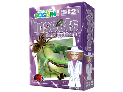 PROF.NOGGIN'S INSECTS SPIDERS