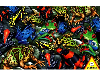 RAINFOREST FROGS 1000pc