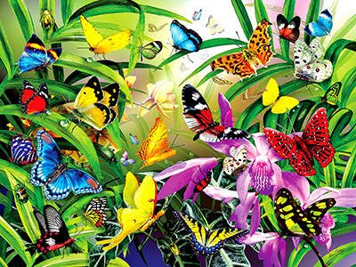 TROPICAL BUTTERFLIES 1000pc
