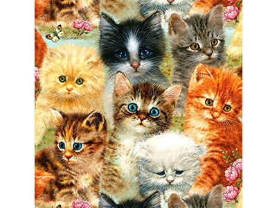 A PILE OF KITTENS 1000pc