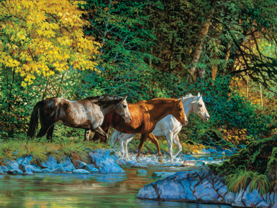 BEAR CREEK CROSSING 1000pc