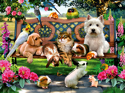 PETS IN THE PARK 500pc