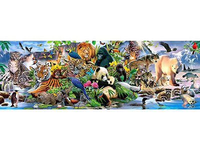 AROUND THE WORLD 500pc