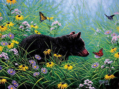 BLACK BEAR & BUTTERFLIES 500pc