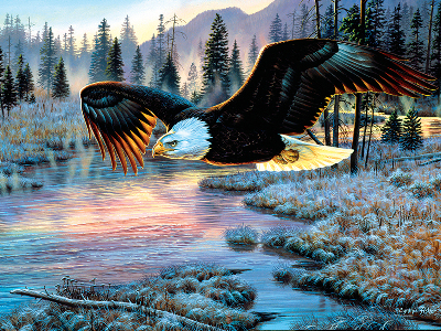 EAGLE DAWN 1000pc