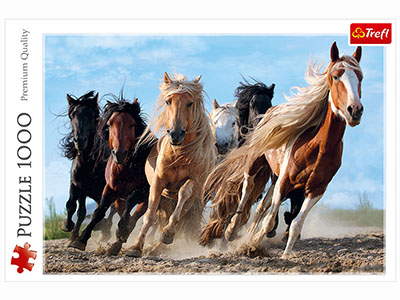 GALLOPING HORSES 1000pc