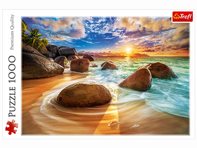 SAMUDRA BEACH, INDIA 1000pc