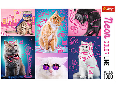 NEON COLOUR LINE CATS 1000pc
