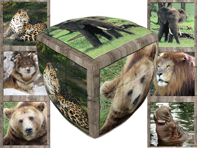 V-CUBE WILD ANIMALS 3x3 PILLOW